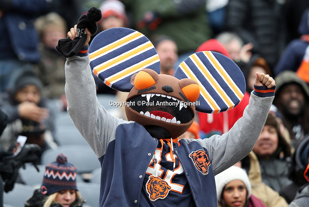 A Chicago Bears fans wears a costume and cheers during the Chicago Bears NFL week 17 regular season football game against the Detroit Lions on Sunday, Jan. 3, 2016 in Chicago. The Lions won the game 24-20. (©Paul Anthony Spinelli)