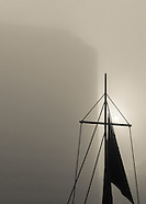 In The Fog Series