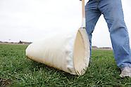IPM Sweep netting Wheat