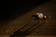 ARCADIA, CA - MARCH 11: Twentytwentyvision #7, With Mike Smith up race in the Santa Anita Handicap at Santa Anita Park on March 11, 2017 in Arcadia, California. (Photo by Alex Evers/Eclipse Sportswire/Getty Images)