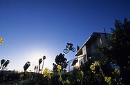 SANTA BARBARA, CA:  A man jumps his mountain bike off a building in Santa Barbara, California.