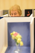 MOUNT LAUREL, NJ - JULY 26:  Marie Shipley views a miniature rose display during the 2014 National Miniature Rose Show, hosted by the West Jersey Rose Society at the Hotel ML  July 26, 2014 in Mount Laurel, New Jersey. (Photo by William Thomas Cain/Cain Images)