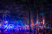 Dancing in teh woods late at night -The 2017 Latitude Festival, Henham Park. Suffolk 13 July 2017
