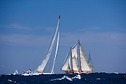 Beauty and Juno sailing in the 2010 Antigua Classic Yacht Regatta, Windward Race, day 4.