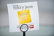 "Promotional material is displayed before a screening of BET's ""Being Mary Jane"" at the W Hotel in Dallas, Texas on June 22, 2013."