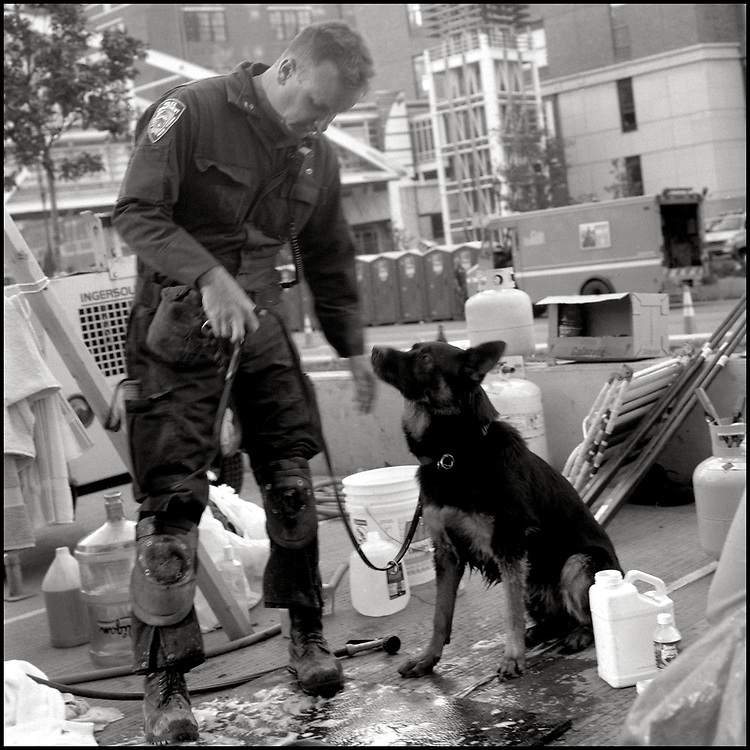 Within hours of the Sept. 11 attacks, thousands of rescue workers from across America deployed to ground zero to help in the search and rescue efforts. Joining the endeavor, were approximately 300 dogs specially trained in search and rescue.<br />