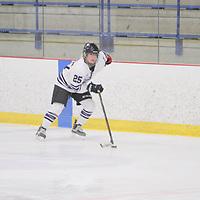 Women's Ice Hockey: University of St. Thomas (Minnesota) Tommies vs. University of Wisconsin-Eau Claire  Blugolds
