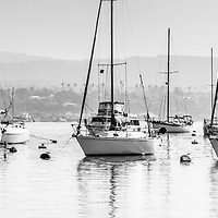 Newport Beach Harbor boats panorama photo in black and white. Panorama photo ratio is 1:3. Newport Harbor is located in Newport Beach in Orange County Southern California.