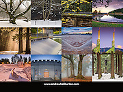 2016 Calendar Mount Tabor Park, Back Cover, Portland, Oregon