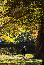 A runner runs through the early fall of leaves in Queens Park, North West London as the early morning sunshine illuminates the leaves of trees as autumn colours begin to set in. London, October 01 2018.