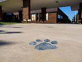 2013 Madison Primary