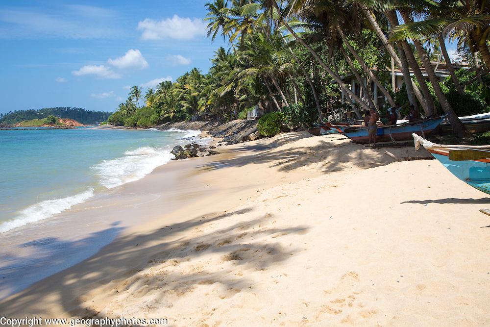 Tropical landscape of palm trees and sandy beach, Mirissa, Sri Lanka, Asia