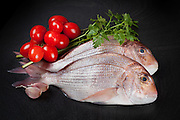 Raw Dentex fish with garlic, parsley and tomatoes on black background.