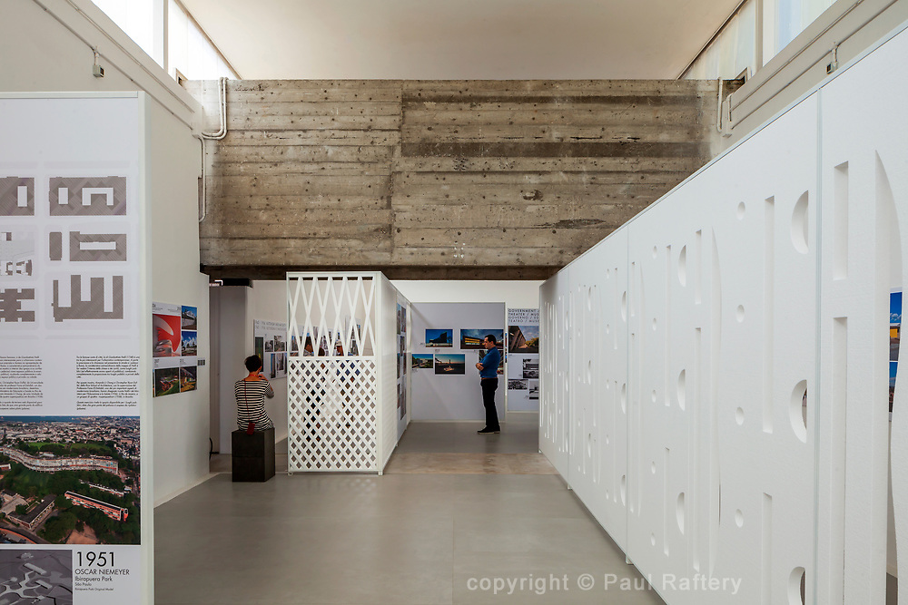 Venice Biennale 2014, Brazilain Pavilion