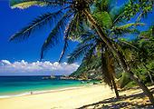 Puerto Rico & Caribbean - Portfolio