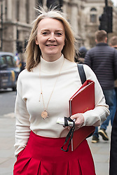 © Licensed to London News Pictures. 27/03/2019. London, UK. Chief Secretary to the Treasury Elizabeth Truss arrives at Parliament for Prime Minister's Questions. MPs will hold a series of indicative votes on different Brexit options this evening. Photo credit: Rob Pinney/LNP