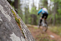 Rider - Carrie Burbidge, Trail Name - Rocky Canyon, Whitehorse Yukon