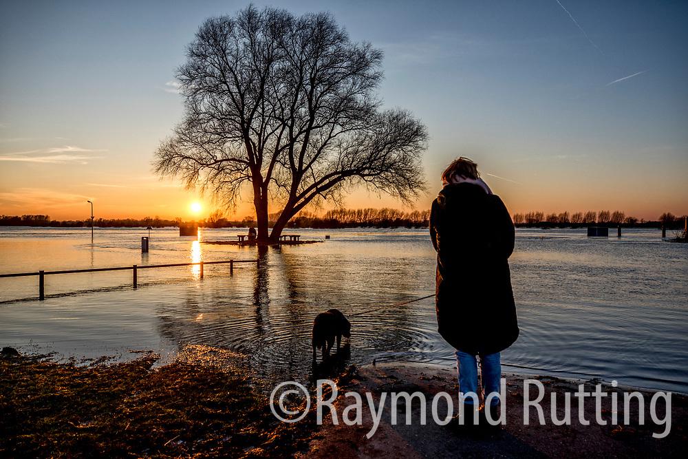 Wijhe - Hoogwater bij de loswal in Wijhe tussen zwolle en deventer. foto raymond rutting