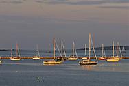 Sailboats in harbor, New York, South Fork, Sag Harbor