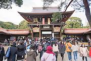 At Meiji Shrine, Tokyo.