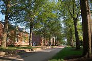 18929East Green campus shots