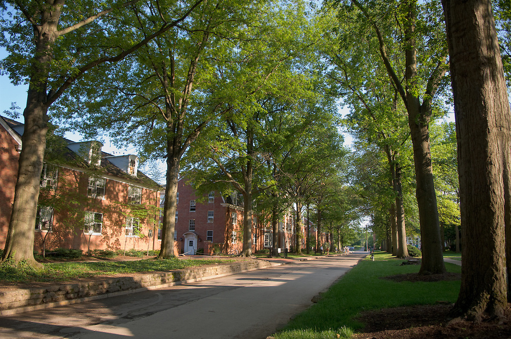 18929East Green campus shots
