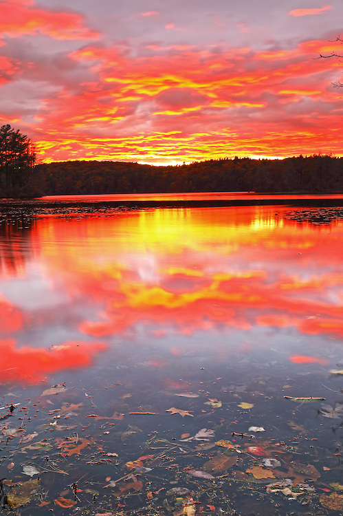 Wellesley Lake Waban sunset  showing a sky on fire with remaining fall foliage colors in the distant treeline. <br />