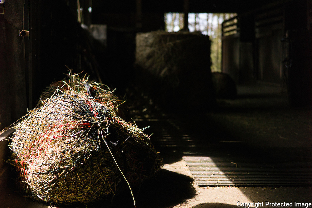 A hay net is caught in the sunlight in a stable block.