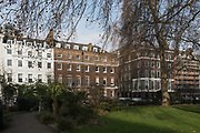 London, England, Uk, January 21 2019 - The Royal Institute for International Affairs, is a Think Tank commonly known as Chatham House.<br /> Outside the Grade-I listed building, built in the early 18th century.