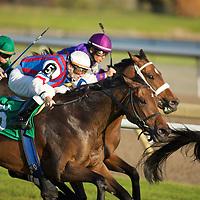 Jockey Rob Landry