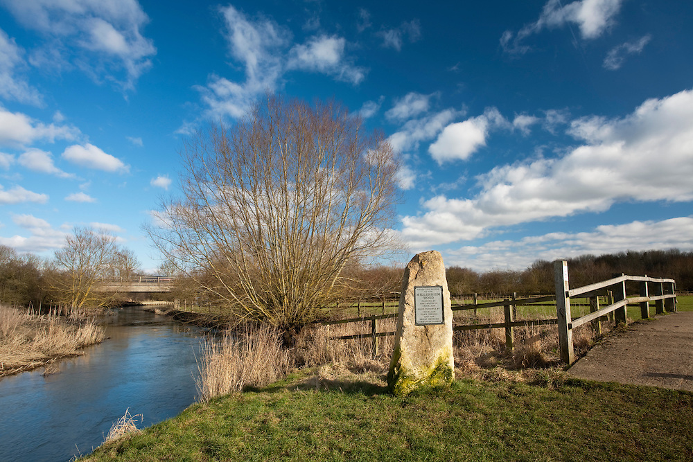 Millenium Wood Plaque on the banks of the River Thames, Cricklade, Wiltshire, Uk