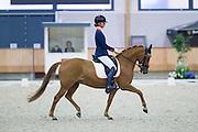 Daphne van Peperstraten - Wonderful Girl<br /> KNHS Indoorkampioenschappen 2016<br /> © DigiShots