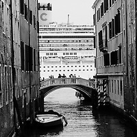 Several organizations are now supporting Venetians and environmentalists in their protest against cruise ships sailing in St Mark's basin, arguing that the increased boat traffic on Venice's waterways increases pollution and damages property.