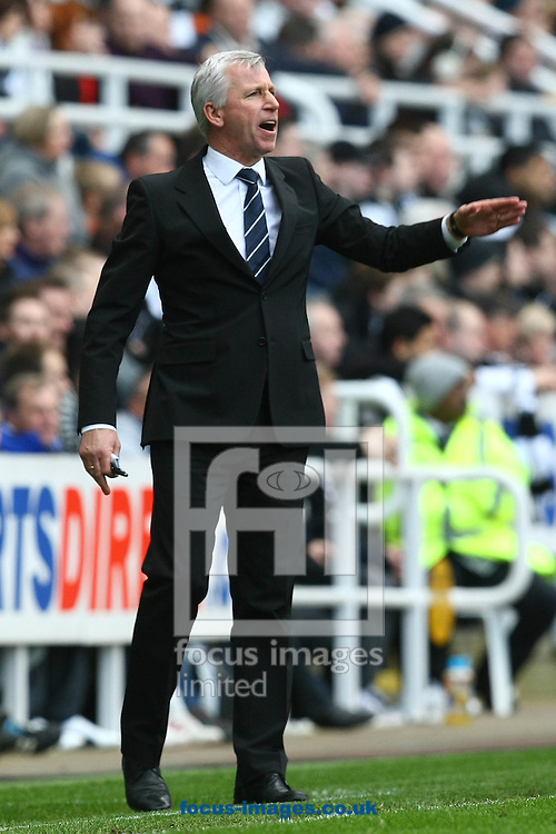 Picture by Paul Chesterton/Focus Images Ltd.  07904 640267.18/03/12.Newcastle Manager Alan Pardew during the Barclays Premier League match at St James' Park Stadium, Newcastle.
