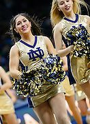 SOUTH BEND, IN - FEBRUARY 11: Notre Dame Fighting Irish dancers are seen during the game against the Florida State Seminolesat Purcell Pavilion on February 11, 2017 in South Bend, Indiana.  (Photo by Michael Hickey/Getty Images)