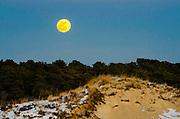 Over the Dunes, Westport Massachusetts