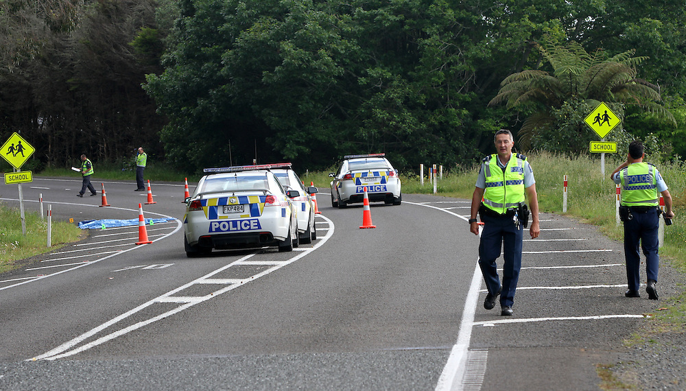 Police and emergency services were called to a crash involving a pedestrian and a vehicle on SH33 by the Whangamarino Primary School, Rotorua, New Zealand, Saturday, November 30, 2013. A lone female was located on the side of the road with serious injuries and has been taken to Rotorua Hospital in a critical condition. Credit:SNPA / Peter Graney