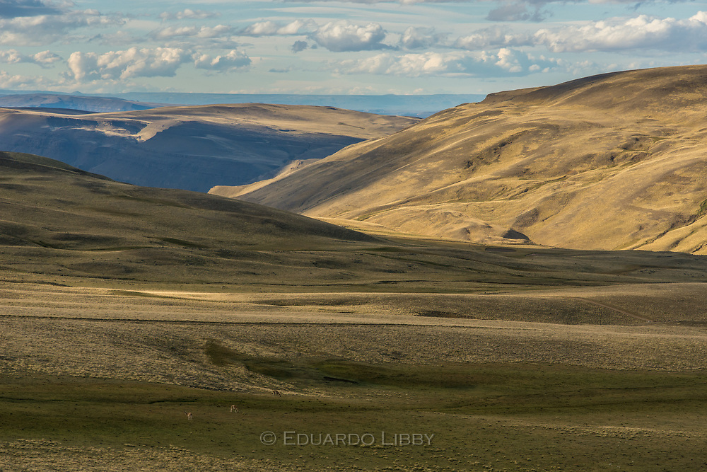 The Patagonian steppe south of El Calafate and Lake Argentino at sunset.