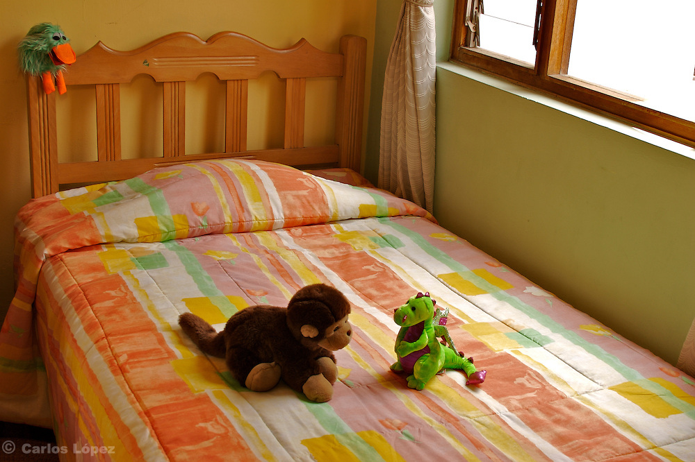 Two toys, one Dragon (Milusk) and a monkey (Jimmy) are talking on a bed next to the window.