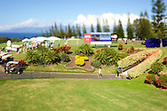 January 10 2016: Fans make their way through the tunnel to the back nine during the Final Round of the Hyundai Tournament of Champions at Kapalua Plantation Course on Maui, HI. (Photo by Aric Becker)