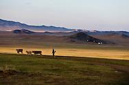 Mongolia. the road to LUN   / route de Lun   - Mongolie