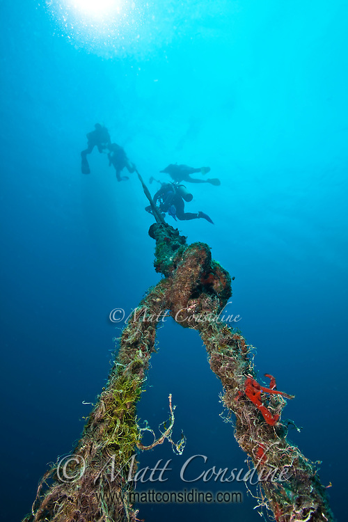 Divers using the mooring line of a buoy marking the wreck of the Iro, Palau Micronesia. (Photo by Matt Considine - Images of Asia Collection)