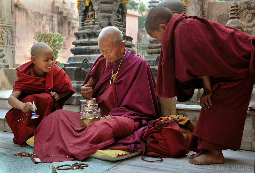 Buddhists meditate next to the tree where Buddha got his Enlightment in Bodh Gaya, India in December 2006. Buddhists from Sri Lanka, Thailand, Burma, Tibet, Bhutan and Japan have  been streaming to the holy city, circumambulating the temple, performing prostrations and offering prayers in a multitude of languages.