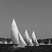 Vindex, Whistler, and Shona sailing in the Herreshoff S Class division of the Newport Yacht Club Tuesday night racing series.