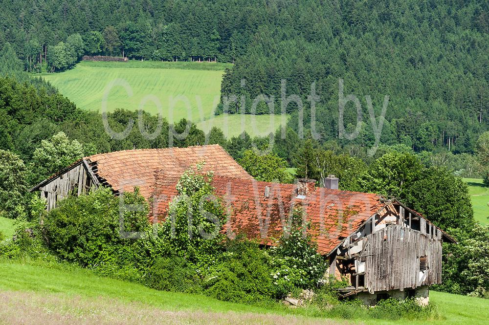 verfallener verlassener Bauernhof, Ruine, Bayerischer Wald, Bayern, Deutschland | farm house ruin, Bavarian Forest, Bavaria, Germany