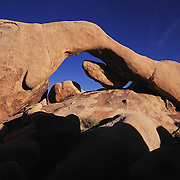 The long span of Arch Rock frames a brilliant blue sky in Joshua Tree National Park in the Mojave Desert..Also sometimes called Ryan Arch.