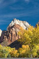 Autumn in Zion National Park Utah USA