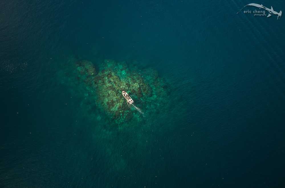 Aerial view of the famous scuba diving dive site Cannibal Rock in Horseshoe Bay, Komodo National Park, Indonesia.