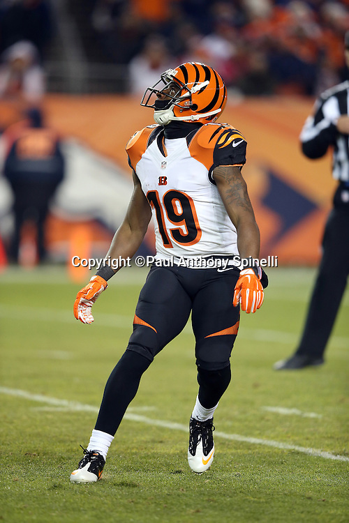 Cincinnati Bengals wide receiver Brandon Tate (19) looks up while fielding a punt during the 2015 NFL week 16 regular season football game against the Denver Broncos on Monday, Dec. 28, 2015 in Denver. The Broncos won the game in overtime 20-17. (©Paul Anthony Spinelli)