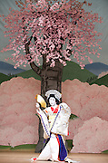 Kabuki <br /> featuring Ebizo Ichikawa XI<br /> at Sadler's Wells, London, Great Britain <br /> rehearsal <br /> 3rd June 2010 <br /> <br /> <br /> Nakamura Shibajaku (as Shizauka)<br /> <br /> <br /> Photograph by Elliott Franks